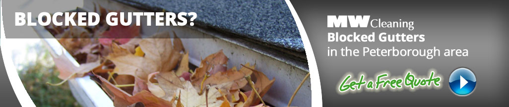 gutter cleaning services in Peterbrough